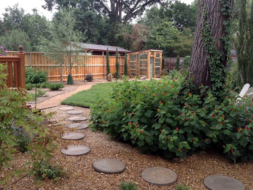 Zone 8 landscapes llc dallas texas landscape design for Drought resistant grass crossword clue